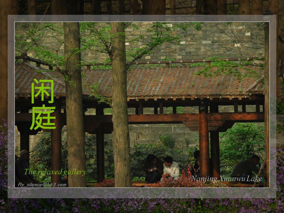 The beautiful flowerNanjing Xuanwu Lake