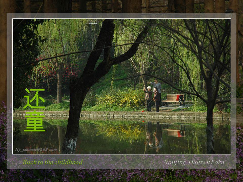 The morning exerciseNanjing Xuanwu Lake