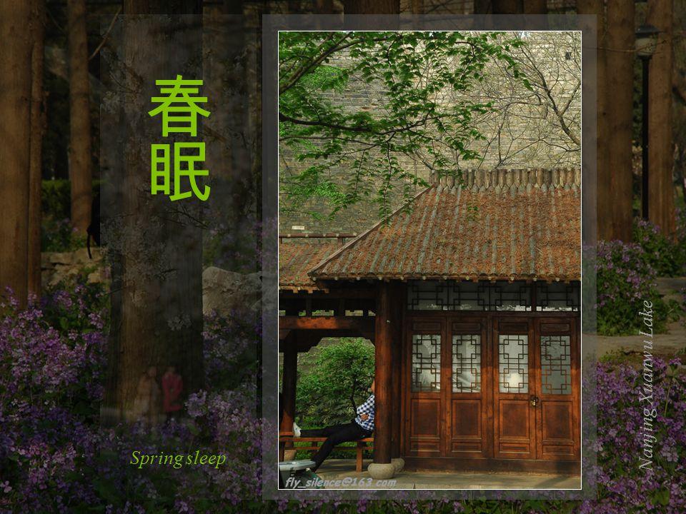 Nanjing Xuanwu Lake Gently beautiful