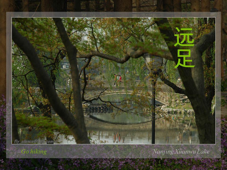 Go hikingNanjing Xuanwu Lake