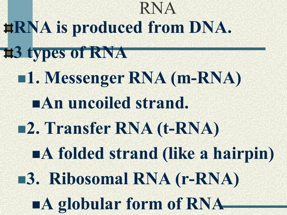 The m-RNA is synthesized in the ribosomes to make a complementary copy of the DNA code for a protein chain.