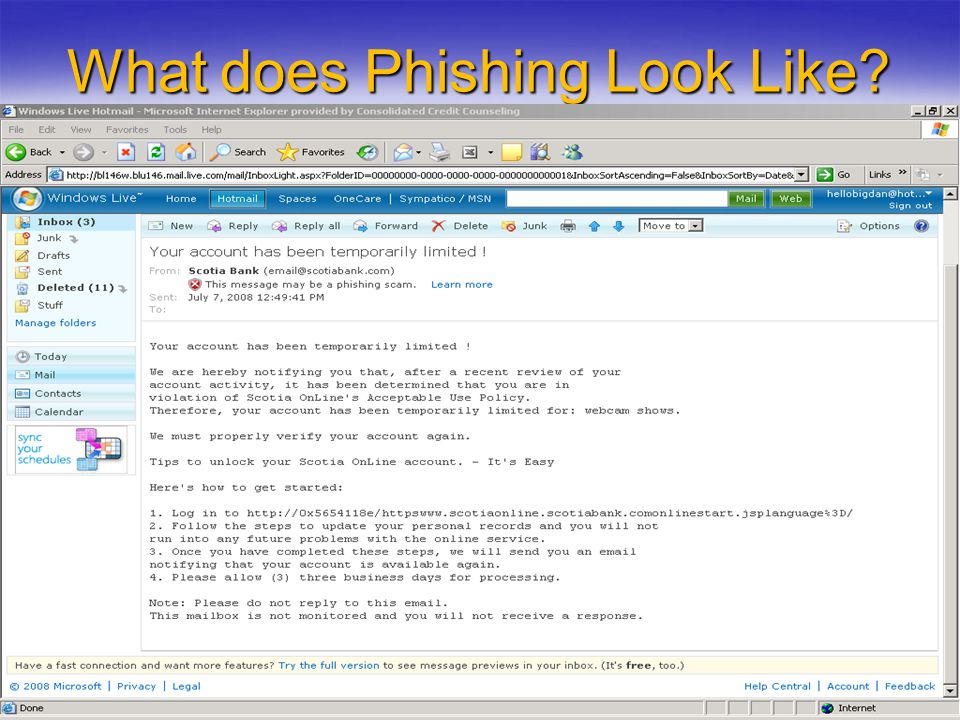 What does Phishing Look Like?