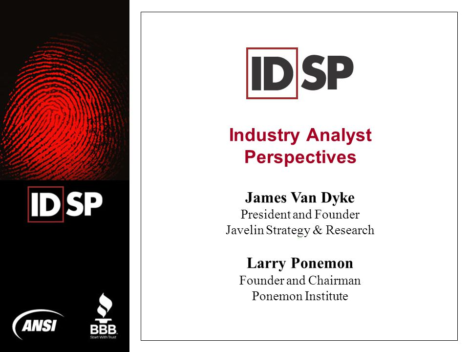 Industry Analyst Perspectives.