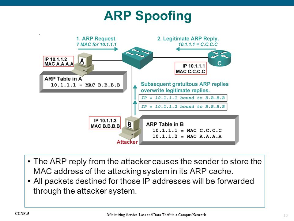 CCNPv5 Minimizing Service Loss and Data Theft in a Campus Network 10 ARP Spoofing The ARP reply from the attacker causes the sender to store the MAC address of the attacking system in its ARP cache.