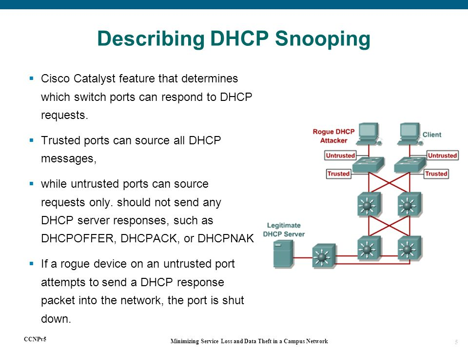 CCNPv5 Minimizing Service Loss and Data Theft in a Campus Network 5  Cisco Catalyst feature that determines which switch ports can respond to DHCP requests.