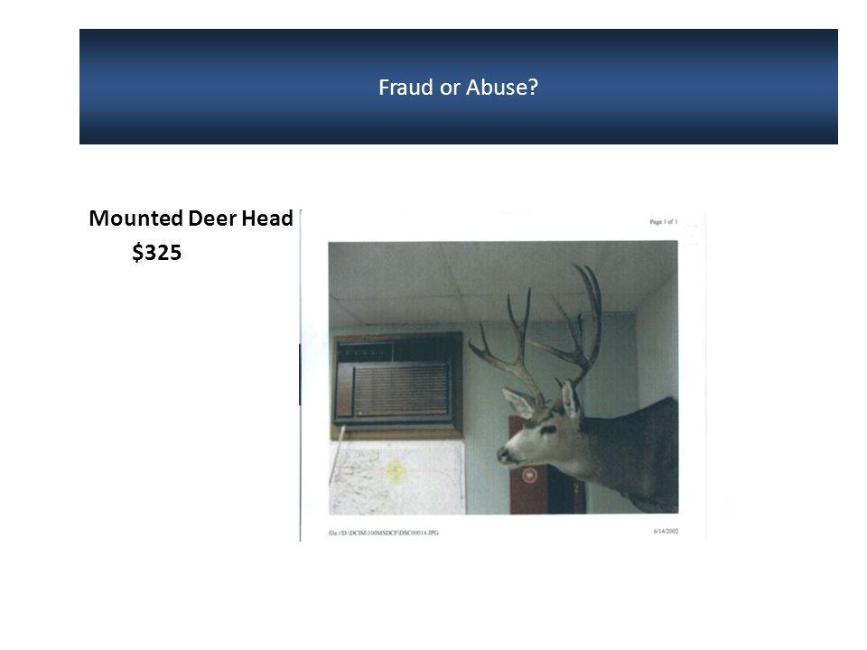 Mounted Deer Head $325 Fraud or Abuse