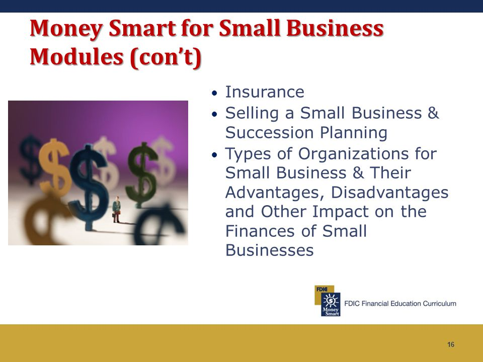16 Money Smart for Small Business Modules (con't) Insurance Selling a Small Business & Succession Planning Types of Organizations for Small Business &