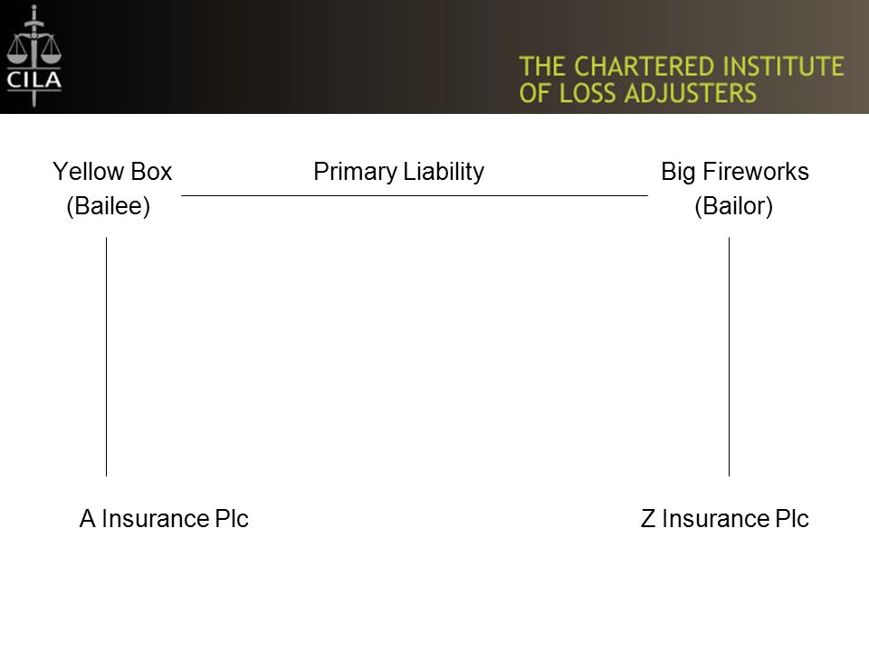 Yellow Box Primary Liability Big Fireworks (Bailee) (Bailor) A Insurance Plc Z Insurance Plc