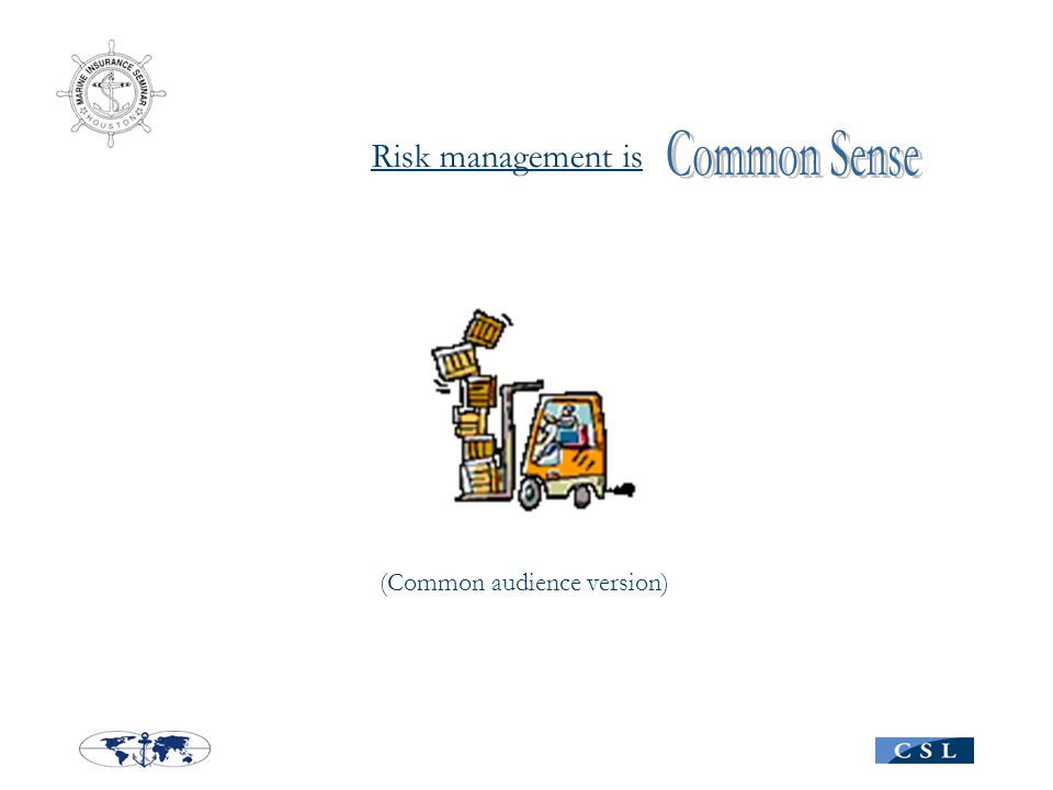Risk management is (Common audience version)