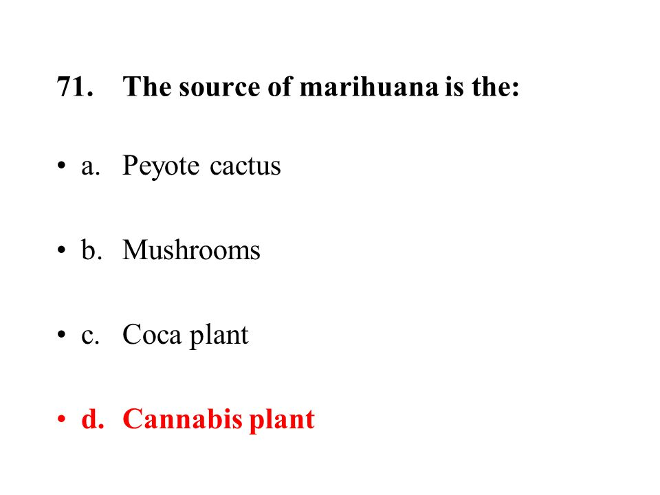 71.The source of marihuana is the: a.Peyote cactus b.Mushrooms c.Coca plant d.Cannabis plant