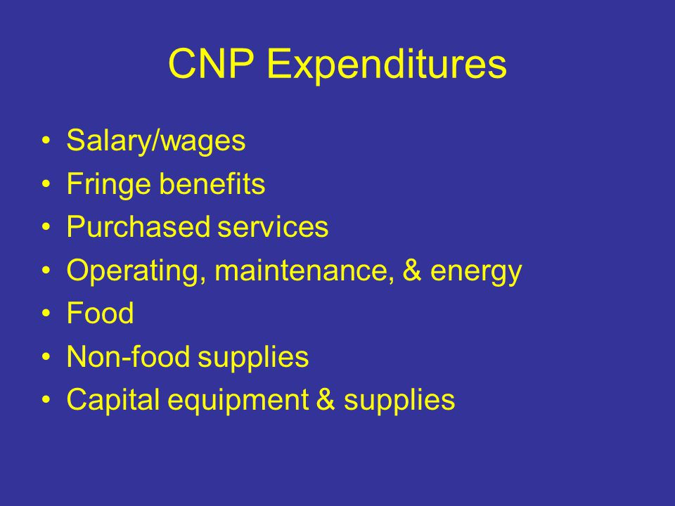 CNP Expenditures Salary/wages Fringe benefits Purchased services Operating, maintenance, & energy Food Non-food supplies Capital equipment & supplies