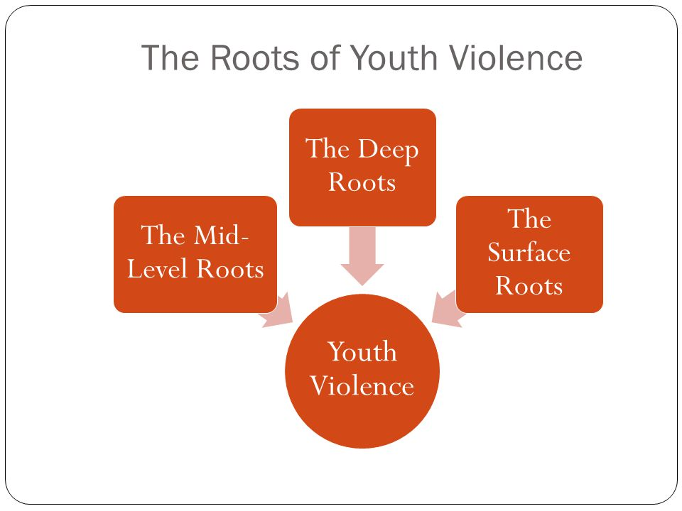The Roots of Youth Violence Youth Violence The Mid- Level Roots The Deep Roots The Surface Roots