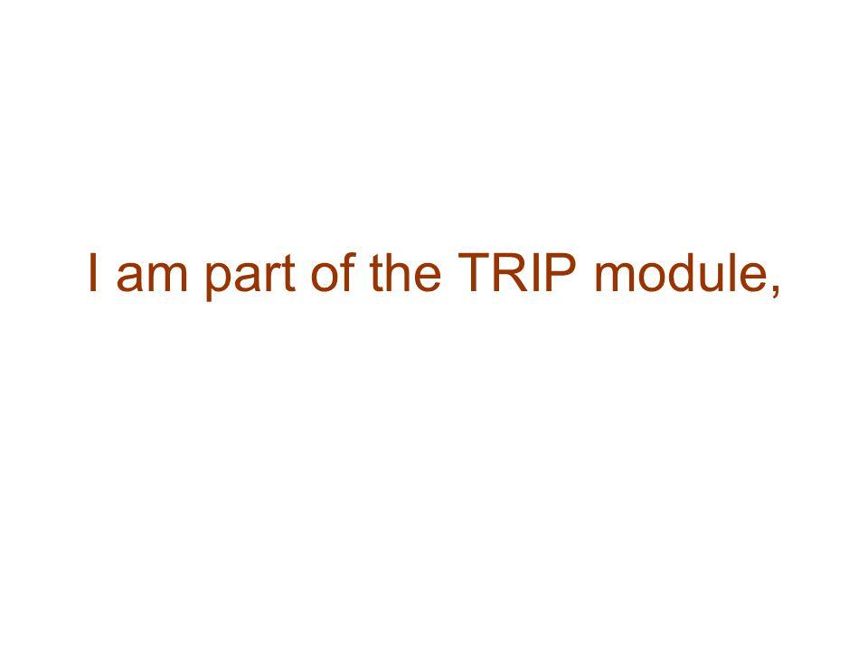 I am part of the TRIP module,