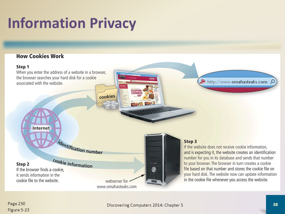 Information Privacy Discovering Computers 2014: Chapter 5 38 Page 230 Figure 5-23
