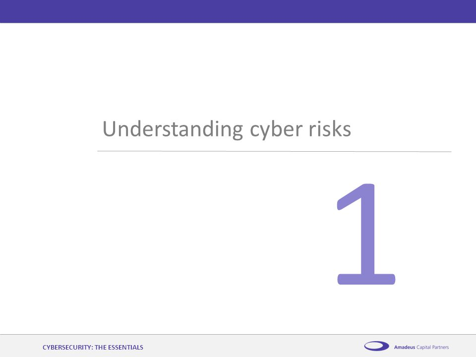 AmadeusCybersecurity: the essentials12 th November 2014 1 Understanding cyber risks CYBERSECURITY: THE ESSENTIALS