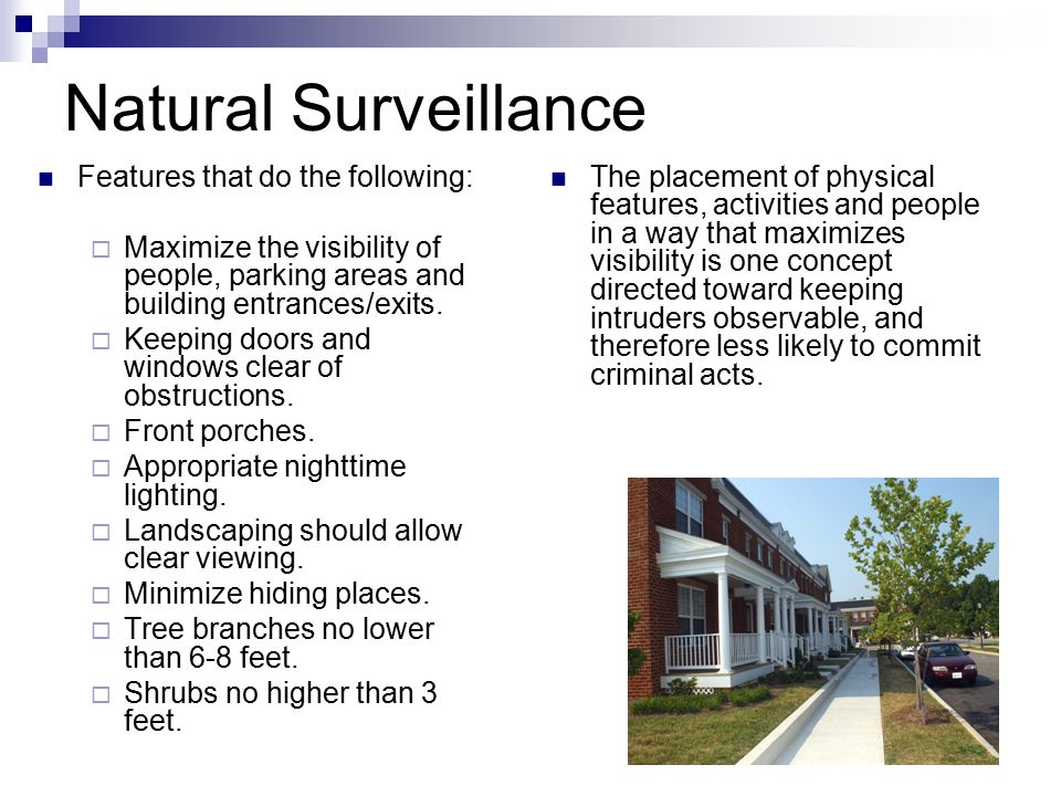 Natural Surveillance Features that do the following:  Maximize the visibility of people, parking areas and building entrances/exits.