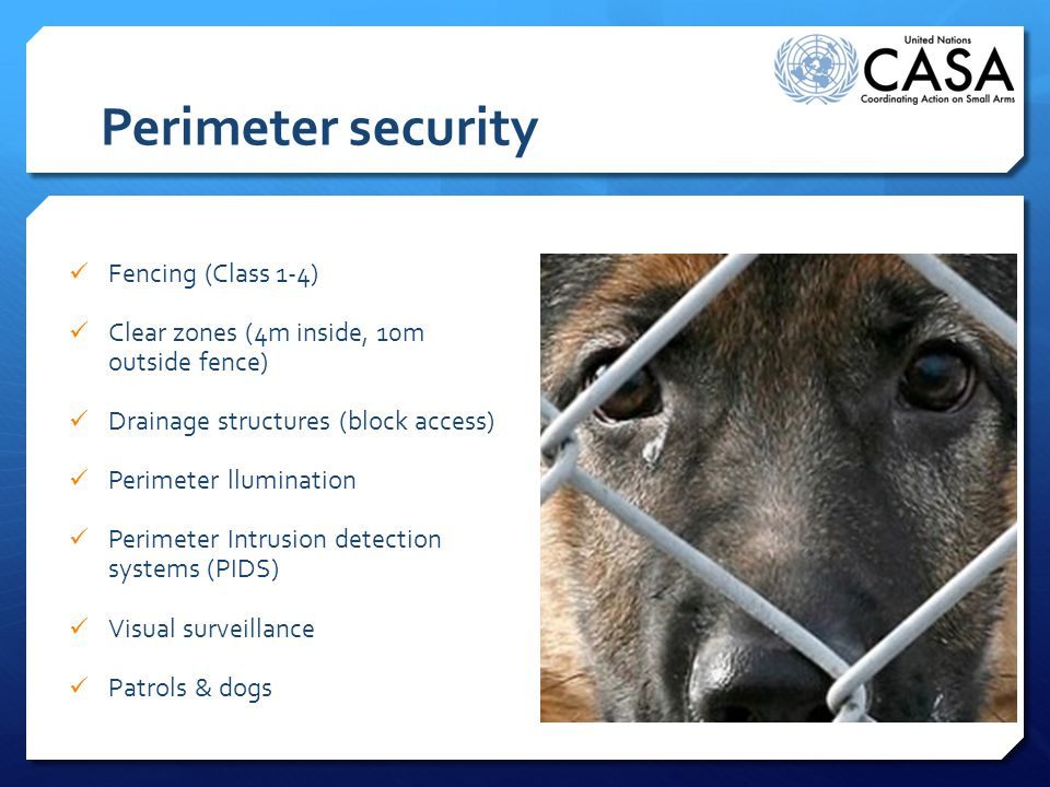 Perimeter security Fencing (Class 1-4) Clear zones (4m inside, 10m outside fence) Drainage structures (block access) Perimeter llumination Perimeter Intrusion detection systems (PIDS) Visual surveillance Patrols & dogs