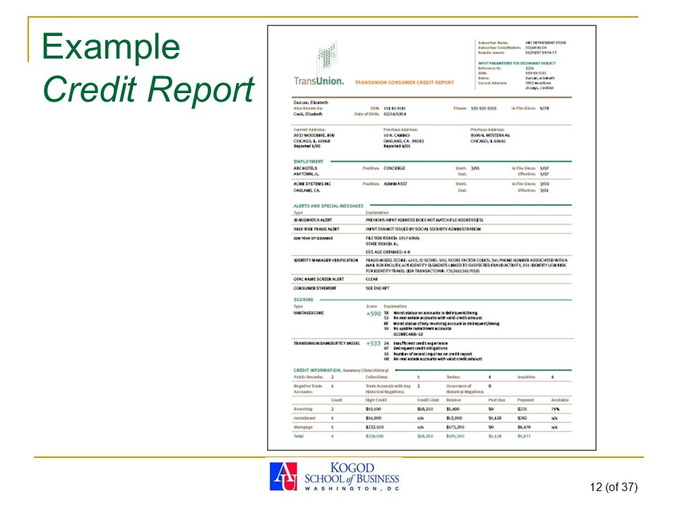 12 (of 37) Example Credit Report