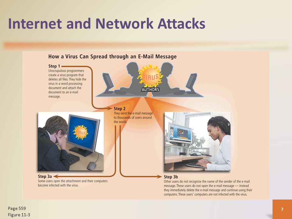 Internet and Network Attacks 8 Page 561 Figure 11-6