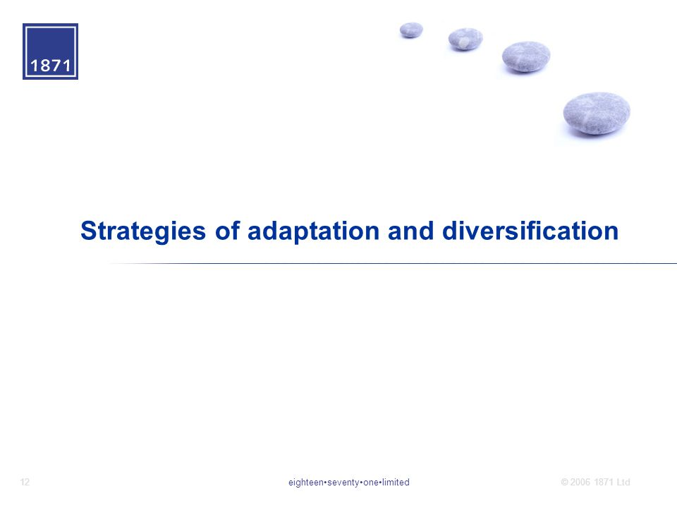 eighteenseventyonelimited12© 2006 1871 Ltd Strategies of adaptation and diversification
