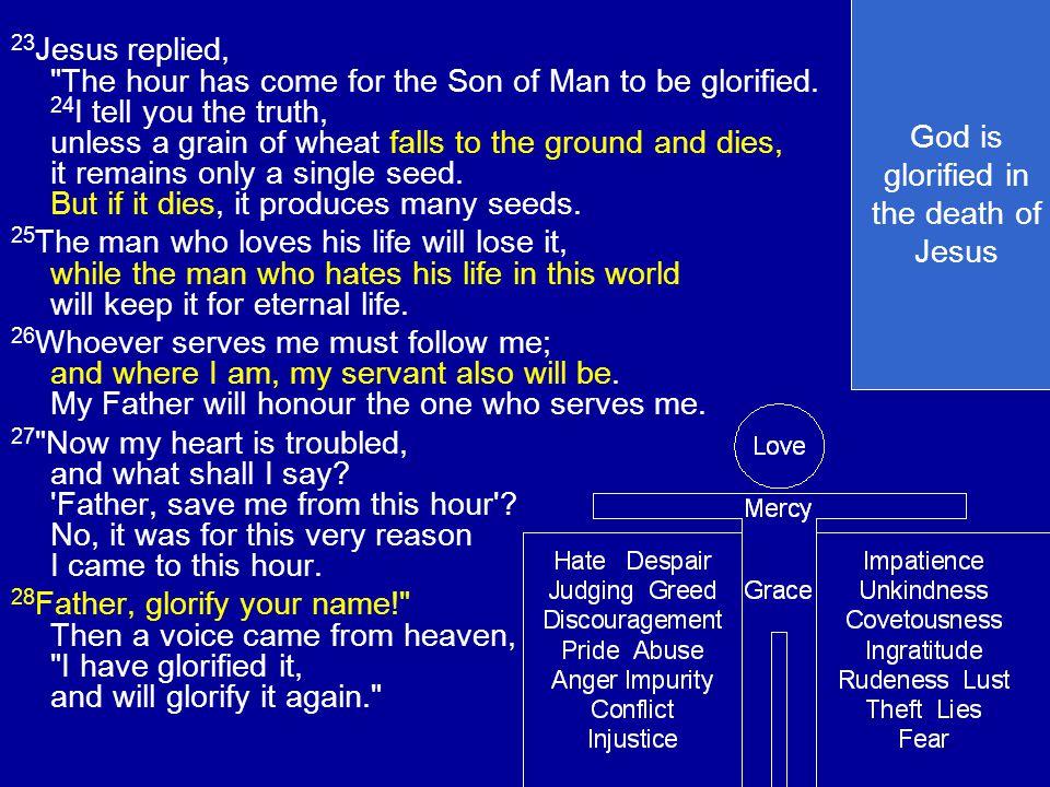 23 Jesus replied,