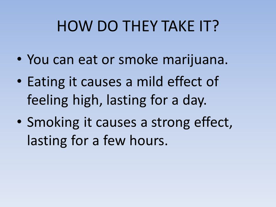 HOW DO THEY TAKE IT? You can eat or smoke marijuana. Eating it causes a mild effect of feeling high, lasting for a day. Smoking it causes a strong eff