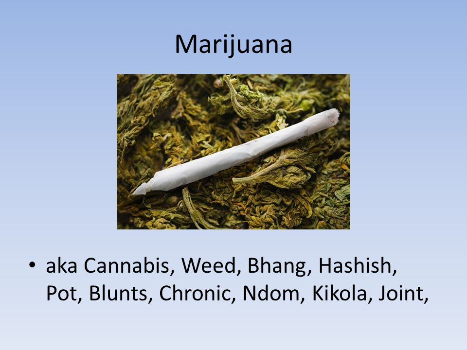 Marijuana aka Cannabis, Weed, Bhang, Hashish, Pot, Blunts, Chronic, Ndom, Kikola, Joint,