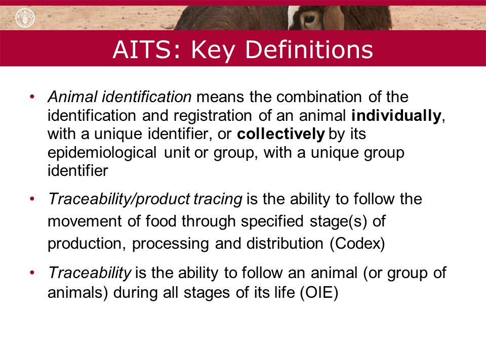 AITS: Key Definitions Animal identification means the combination of the identification and registration of an animal individually, with a unique iden