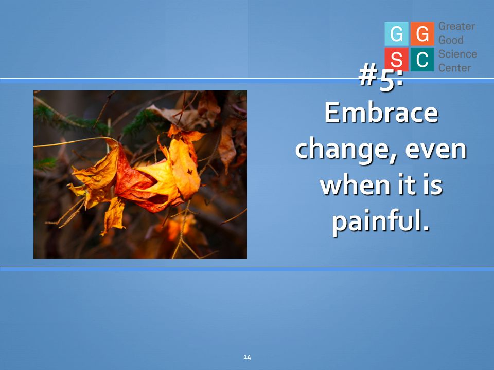 14 #5: Embrace change, even when it is painful.