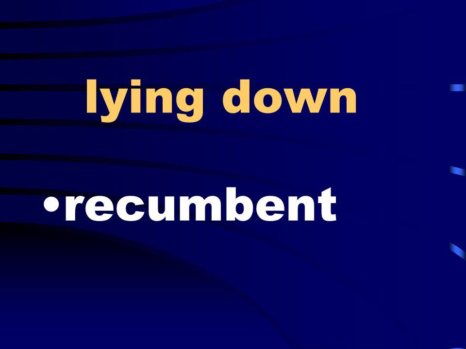 lying down recumbent