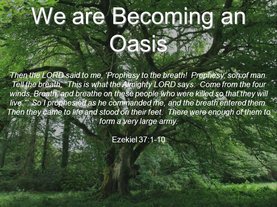 We are Becoming an Oasis Then the LORD said to me, 'Prophesy to the breath.