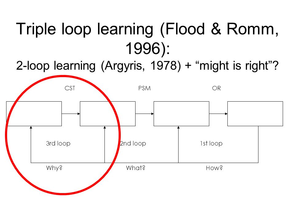 Triple loop learning (Flood & Romm, 1996): 2-loop learning (Argyris, 1978) + might is right .