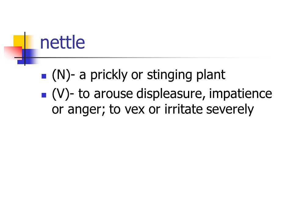 nettle (N)- a prickly or stinging plant (V)- to arouse displeasure, impatience or anger; to vex or irritate severely