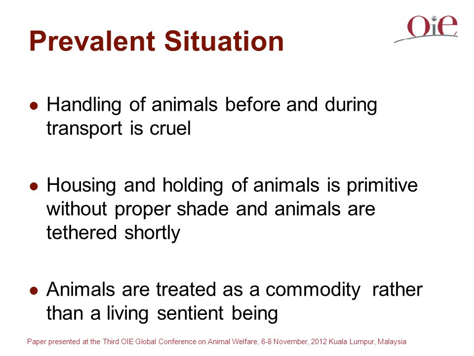 Paper presented at the Third OIE Global Conference on Animal Welfare, 6-8 November, 2012 Kuala Lumpur, Malaysia Prevalent Situation Handling of animals before and during transport is cruel Housing and holding of animals is primitive without proper shade and animals are tethered shortly Animals are treated as a commodity rather than a living sentient being