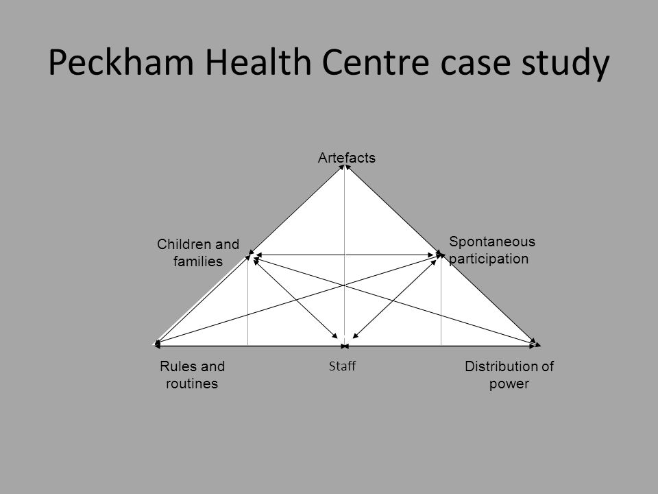Artefacts Spontaneous participation Staff Distribution of power Rules and routines Children and families Peckham Health Centre case study