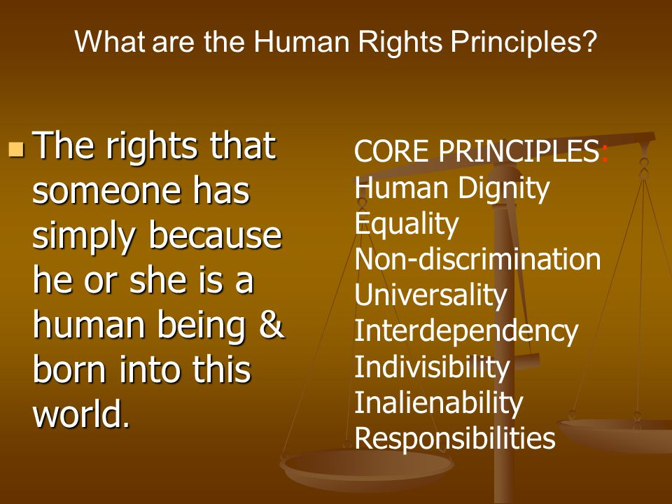 What are the Human Rights Principles? The rights that someone has simply because he or she is a human being & born into this world. The rights that so