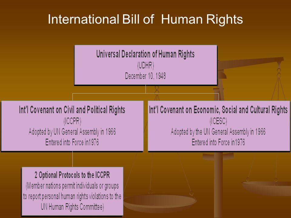 International Bill of Human Rights