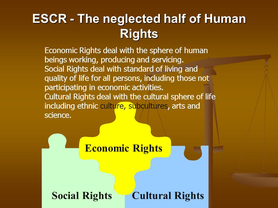 Economic Rights Cultural RightsSocial Rights ESCR - The neglected half of Human Rights Economic Rights deal with the sphere of human beings working, p