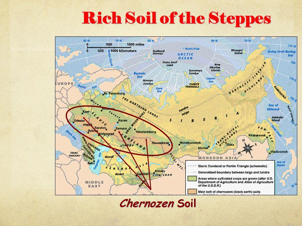 Rich Soil of the Steppes Chernozen Soil