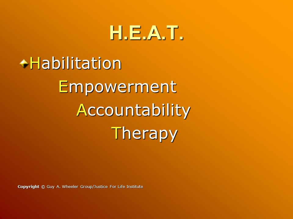 H.E.A.T. Habilitation Empowerment Empowerment Accountability Therapy Therapy Copyright © Guy A.