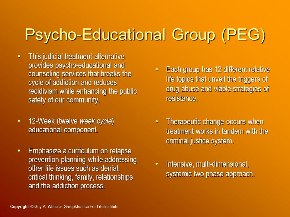 Psycho-Educational Group (PEG) This judicial treatment alternative provides psycho-educational and counseling services that breaks the cycle of addiction and reduces recidivism while enhancing the public safety of our community.