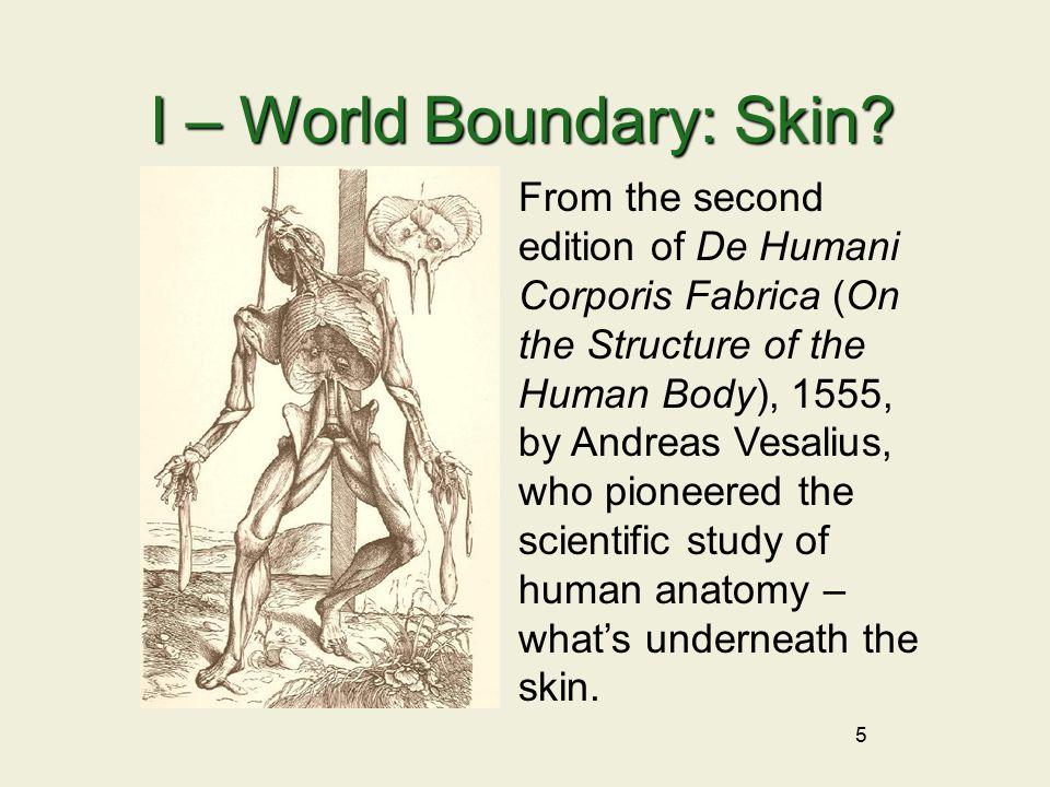 5 I – World Boundary: Skin.