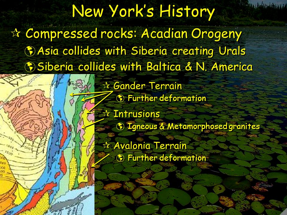  Gander Terrain  Further deformation  Gander Terrain  Further deformation  Avalonia Terrain  Further deformation  Avalonia Terrain  Further deformation New York's History  Compressed rocks: Acadian Orogeny  Asia collides with Siberia creating Urals  Siberia collides with Baltica & N.