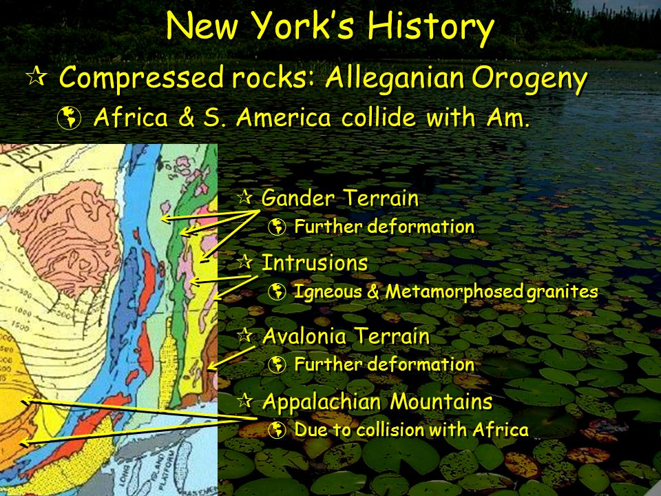 New York's History  Compressed rocks: Alleganian Orogeny  Africa & S.