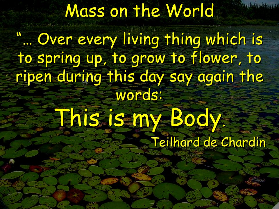Mass on the World … Over every living thing which is to spring up, to grow to flower, to ripen during this day say again the words: This is my Body.