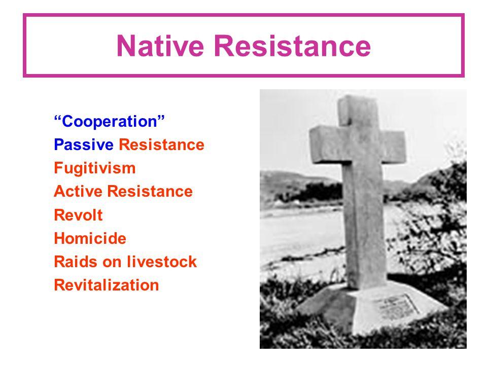 Native Resistance Cooperation Passive Resistance Fugitivism Active Resistance Revolt Homicide Raids on livestock Revitalization