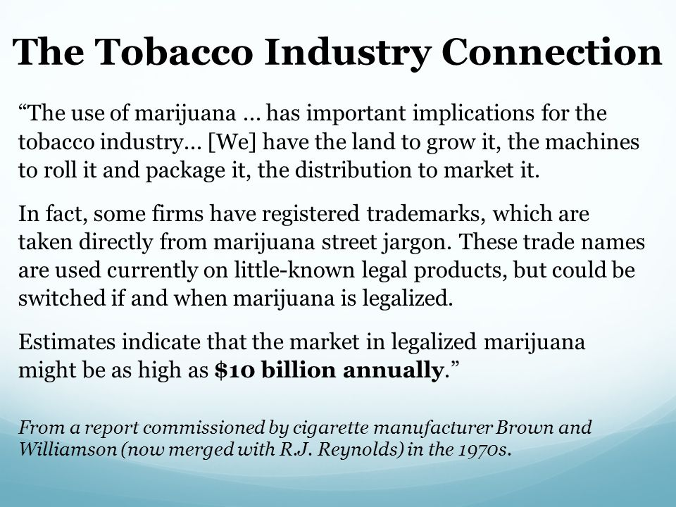 The use of marijuana... has important implications for the tobacco industry...