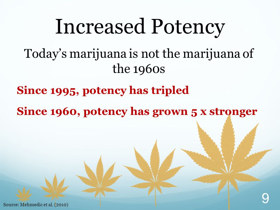 Today's marijuana is not the marijuana of the 1960s Since 1995, potency has tripled Since 1960, potency has grown 5 x stronger Increased Potency 9 Source: Mehmedic et al.