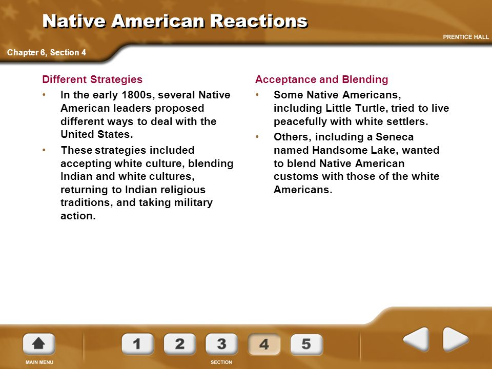 Native American Reactions Different Strategies In the early 1800s, several Native American leaders proposed different ways to deal with the United Sta