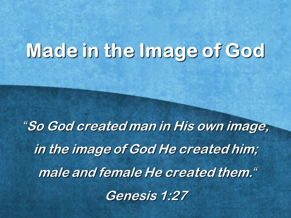 Made in the Image of God So God created man in His own image, in the image of God He created him; male and female He created them. male and female He created them. Genesis 1:27